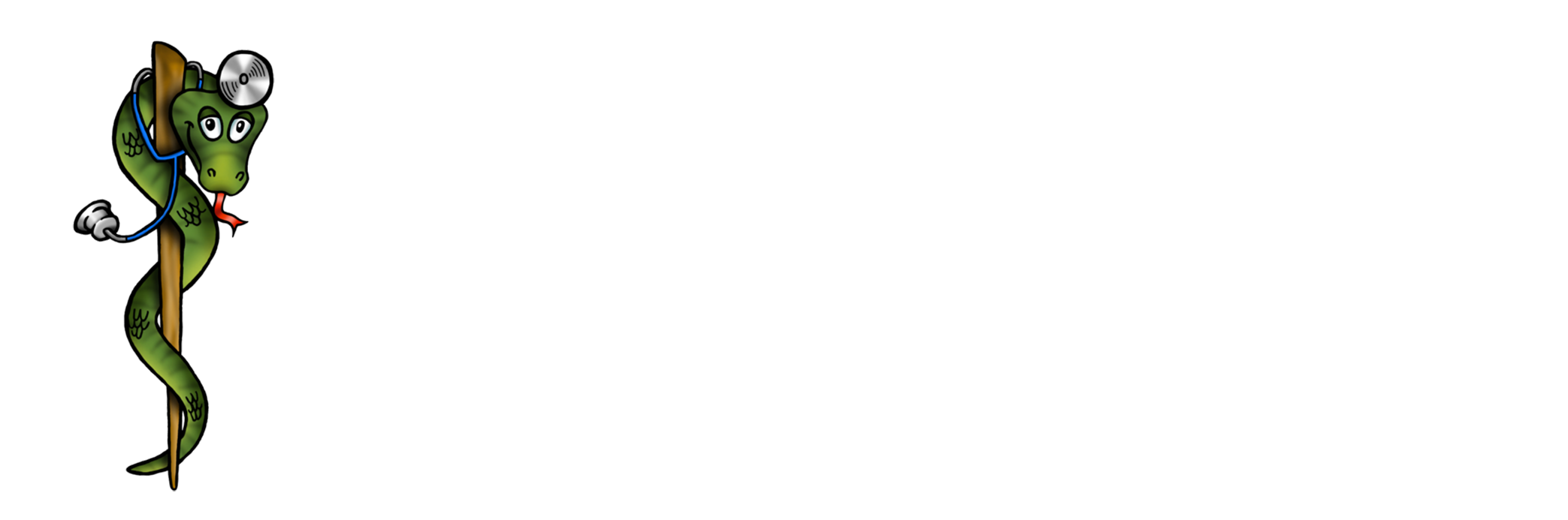 Physican's Guide to Doctoring